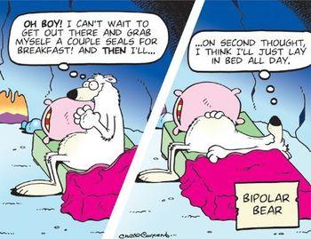 bipolar-bear